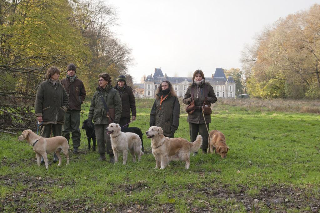 Battues avec chiens