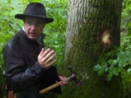 Découverte de l'Écosystème d'une Forêt