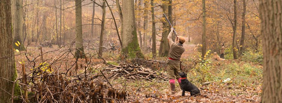 chasse_petit_gibier_action_de_chasse_chasse_avec_chien