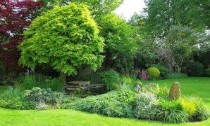 Les jardins à l'anglaise