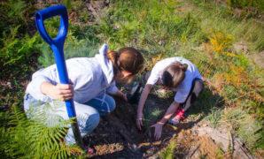 Les team building écologiques